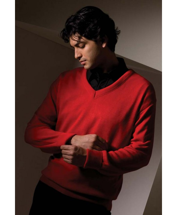 Edwards Garment 265 Value V-Neck Pullover Sweaters